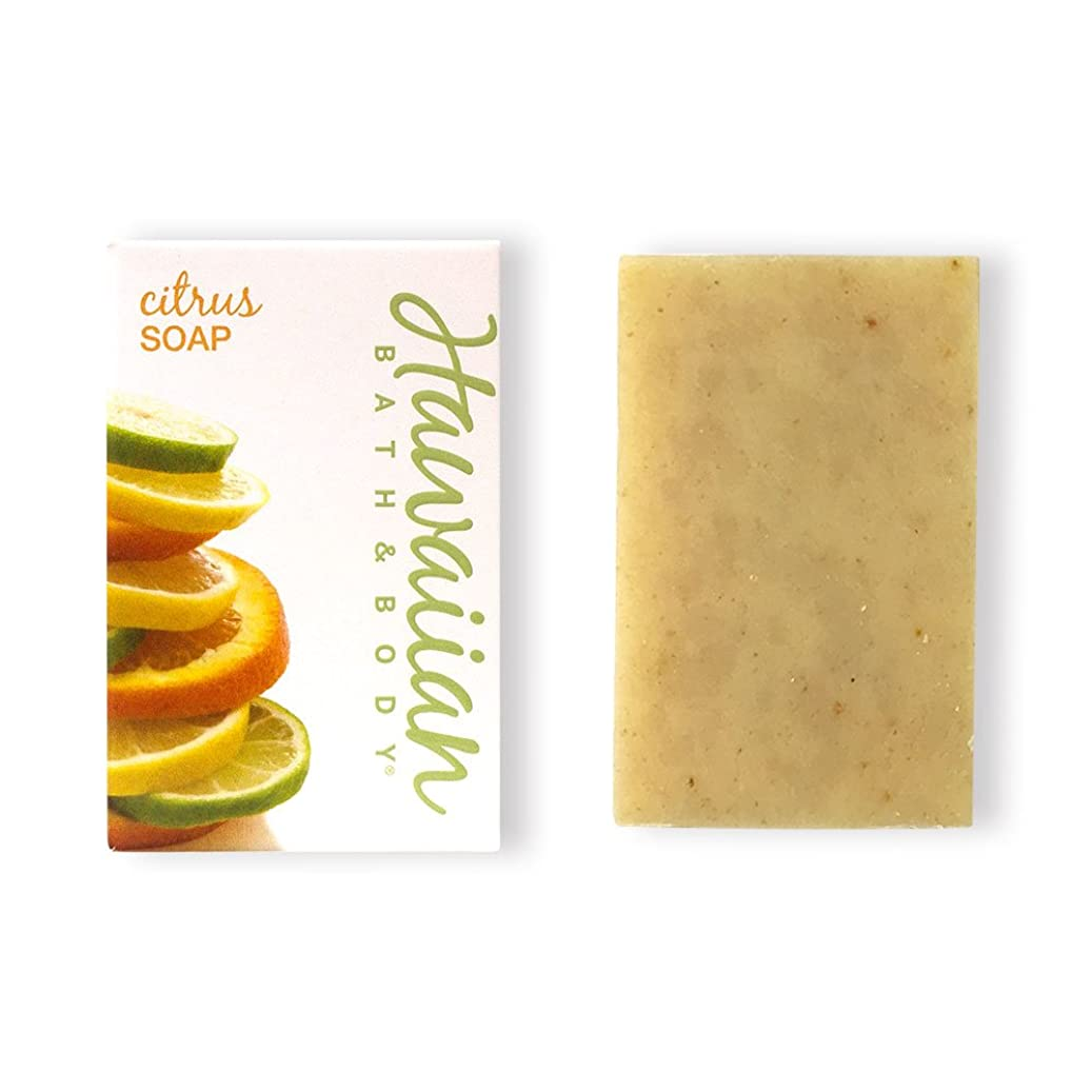 経験的百年南アメリカハワイアンバス&ボディ ハワイアン?シトラスソープ( Citrus Soap )