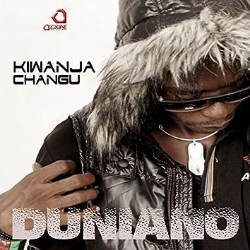 Kiwanja Changu