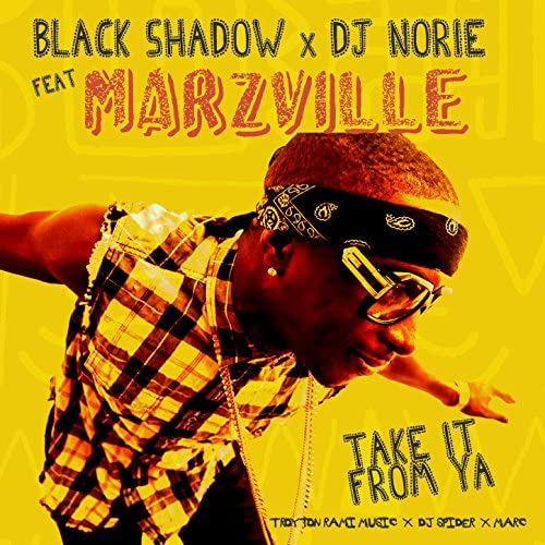 Black Shadow & Dj Norie feat. Marzville