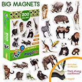 MAGDUM Imanes Animales Zoo Foto Real de Pizarra Infantil para niños -...