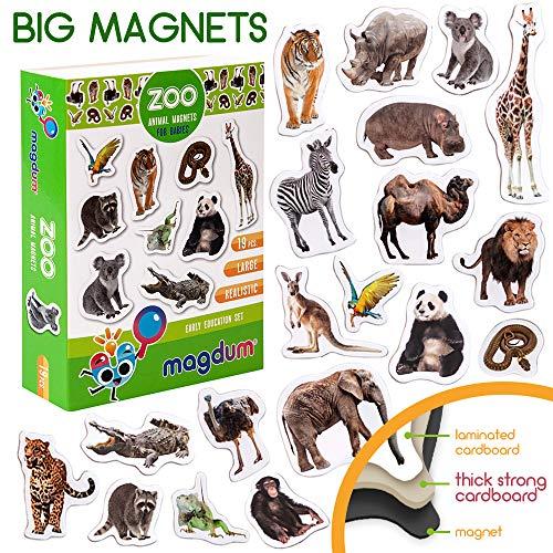 MAGDUM Imanes Animales Zoo Foto Real Infantil para niños - Imanes Nevera Grandes - Juguetes ED-UCATIVOS bebé 3 años - Imanes Pizarra magnética para Aprender – Set Teatro de imán para bebé