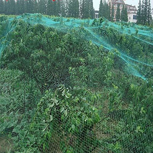 2 Unidades 4x 10m Red de Anti-Pájaros, PE Red Protector de Frutas Plantas de verduras Árboles-Proteger árboles frutales, jardín, 32x 13pies