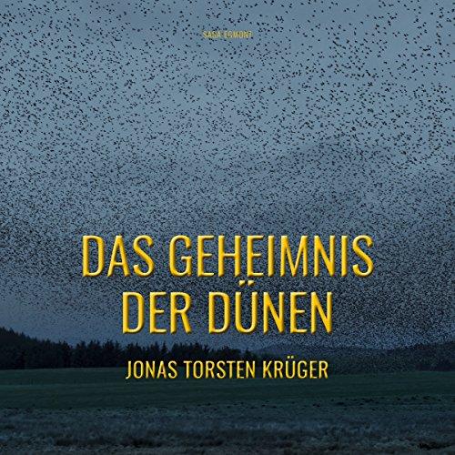 Das Geheimnis der Dünen - Gefährliche Ferien auf Norderney audiobook cover art
