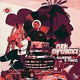 Funk Experience [Vinilo]