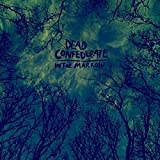 Songtexte von Dead Confederate - In the Marrow