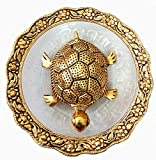 Product Dimensions : 5.5 inches. Material: Oxidize metal and Glass. TORTOISE has great significance both in Vastu and in Feng Shui. Tortoise has a long life and hence it denotes Long life. The Tortoise or the Kachua represents the maximum age and lon...