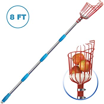 MIYA Fruit Picker Tool- Height Adjustable Fruit Picker with Big Basket - 8 ft Apple Orange Pear Picker with Light-Weight Stainless Steel Pole and Extra Fruit Carrying Bag for Getting Fruits(8 FT)