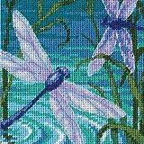 DIMENSIONS Par de libélula, Multicolor