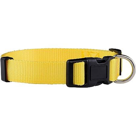 Native Yellow Thin Dog Leash