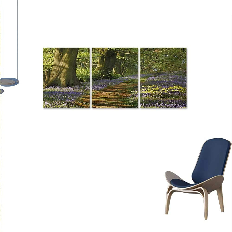 Woodland Art-Canvas Prints Carpet blueebells Spreads Through Woodland in Staffordshire England Modern Wall Art Living Room Decoration 16 x24 x3pcs Green Purple Brown