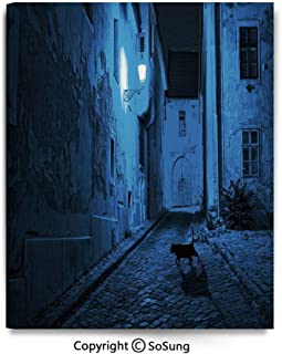 Modern Gallery Wrapped Canvas Wall Art Black Cat Crossing Deserted Street at Night Mysterious Old European Town Alley Ready to Hang for Living Room Kitchen Home Decor,24x30inch Blue Black White