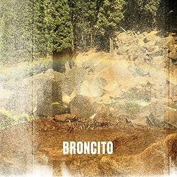 Broncito