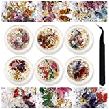 6 Box 3D Butterfly Nail Art Decals Nail Crystals Rhinestones Butterfly Nail Charms Accessories Acrylic Nails Supply Design DIY Gems Manicure with 1pcs Tweezers
