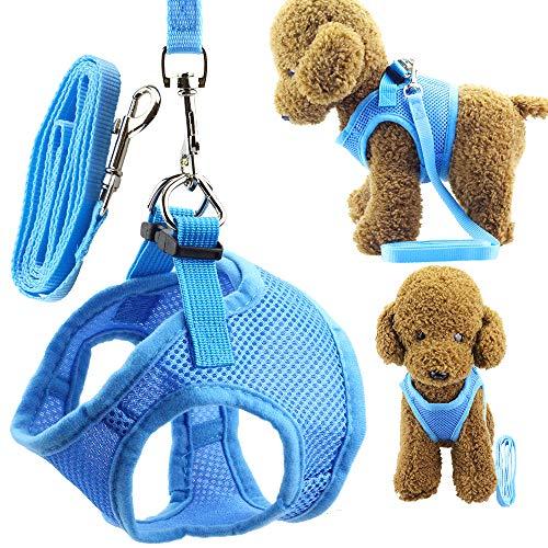 Wiz BBQT Soft Adjustable Mesh Dog Puppy Cat Pet Vest Harness and Leash Set for Dogs Cats Pets (A, Blue)