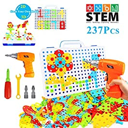 HAPTIME 237 Pieces Electric DIY Drill Educational Set and 8 Animals Accessories