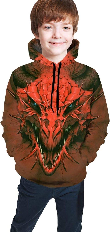 Red Dragon in Stone Boys Girls Hoodies Kids Cute 3D Print Hooded Sweatshirts