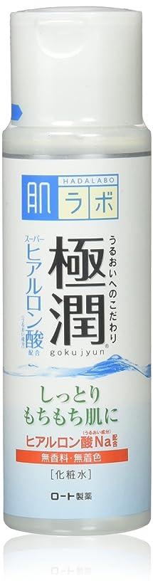 拮抗隙間終わり肌研(ハダラボ) 極潤 ヒアルロン液 170mL