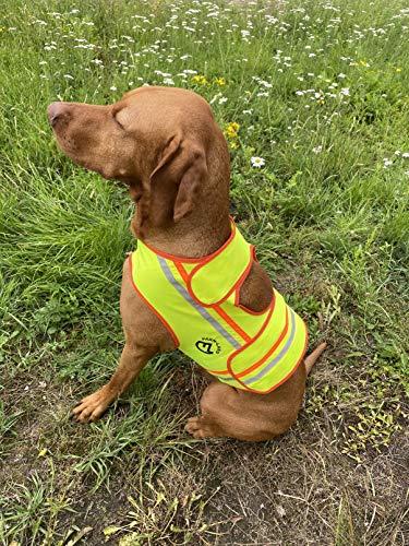 FARM-LAND Hunde Reflektorweste Warnweste Schutzweste Jagd (XL)
