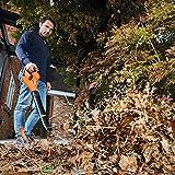 Immagine 2 black decker soffiatore foglie a