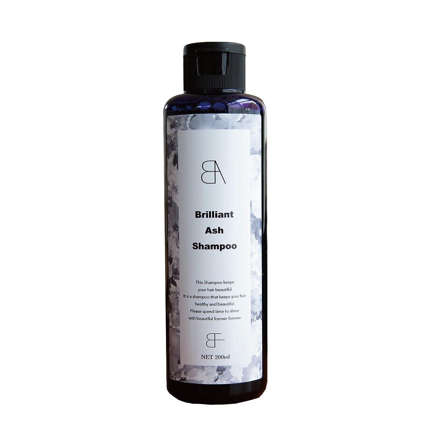 藤色句読点リンクBrilliant Ash Shampoo(ブリリアント アッシュ シャンプー) カラーシャンプー シルバーシャンプー 200ml (サロン専売商品)