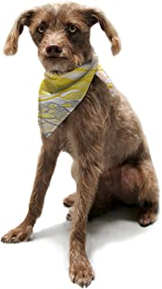 "Kess InHouse Gill Eggleston""Kalahari"" Pet Bandana and Scarf, 28 by 20 by 20-Inch"