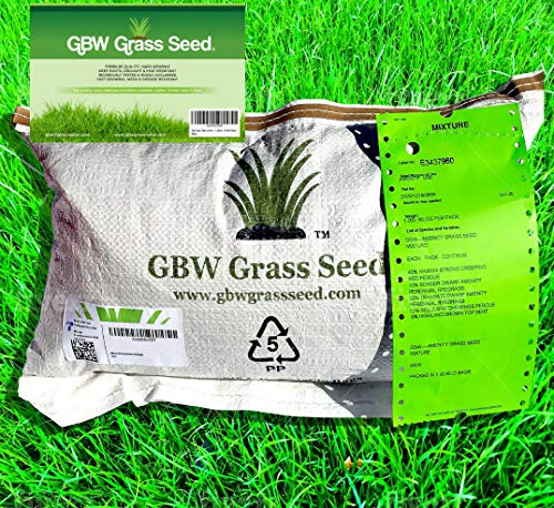 1kg Grass Seed Covers up to 35 m2 (375 ft2) New...