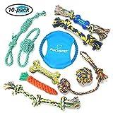 Focuspet Hundespielzeug Set, Haustier Hund Geflochten Seil Spielzeug Set Hund Spielzeug Interaktive Baumwolle Zähne Reinigung Für Kleine Bis Mittlere Hunde Kauspielzeug (10 Stücke)