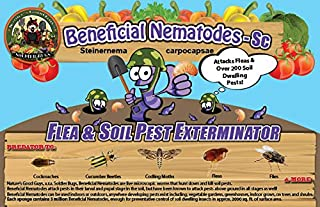 Bug Sales 50 Million Live Beneficial Nematodes Sc - Flea and Fly Exterminator