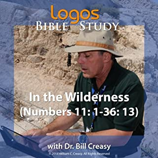 In the Wilderness (Numbers 11: 1-36: 13) audiobook cover art