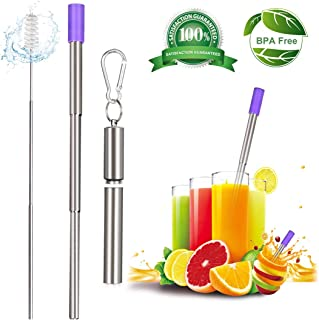 Metal Straws Collapsible Reusable Keychain Straw - Tocode Telescopic Stainless Steel Foldable Drinking Straws with Travel Cases Cleaning Brush Silicone Tip