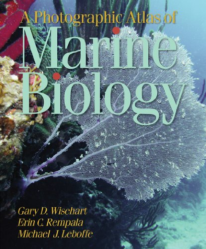 A Photographic Atlas of Marine Biology