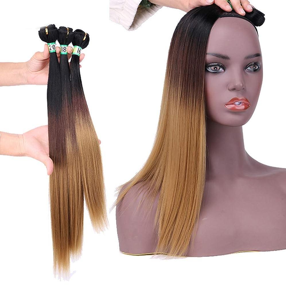 推進ゾーン興奮HOHYLLYA 髪織りストレートヘア3バンドルヘアエクステンション - T1 / 4/27ブラウンとブラックのツートンカラー(16