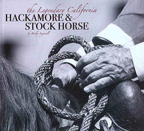 The Legendary California Hackamore & Stock Horse