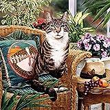 Lazodaer Kit de pintura de diamante 5D, bordado de diamantes de imitación de punto de cruz, arte para decoración del hogar, gato en silla, 30 x 30 cm