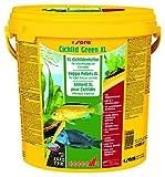 sera 00217 Cichlid Green XL 10 Liter - das Grünfutter mit 10% Spirulina für größere herbivore Cichliden z.B. Malawi oder Moori