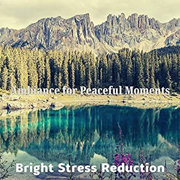 Ambiance for Peaceful Moments