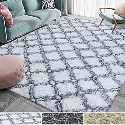 Homore Fluffy Bedroom Rug Super Soft Velvet Plush Carpet 6x9 Feet, Shag Moroccan Area Rugs for Living Room Kid Girls Carpets Home Bed, White