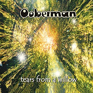 Tears From A Willow