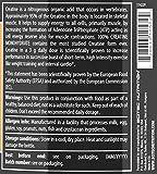 Zoom IMG-1 scitec nutrition 100 creatine 500