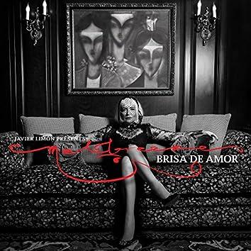 Brisa de Amor (Javier Limon Presents)