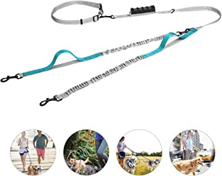 UgBaBa Hands Free Dog Leash for Walking Running Training Jogging,Heavy Duty Double Shock Absorbing Bungee Dog Leash Kit for 2 Dogs,Adjustable Waist Belt,Reflective, 3 Handles for Extra Control