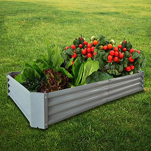 BATH KNOT Galvanized Steel Raised Garden Bed Kit Outdoor Metal Above Ground Planter Box for Vegetables Flowers Herbs and Plants, 8x4x1-Feet, Dark Grey