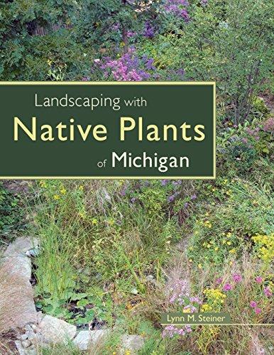 密歇根本地植物景观