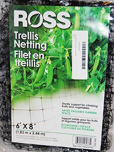 Bert#039s Garden Trellis Netting 6ft x 8ft with 20 Plant Clips