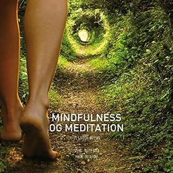 Mindfulness & Meditation. 20 Guidede Øvelser