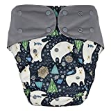 Cloth Diaper Cover - Reusable Special Needs Incontinence Protective Briefs for Big Kids, Teens and Adults (Bear, Youth)