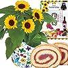 父の日ギフト ひまわり 鉢植え ぶどう ロールケーキ 花とスイーツ フラワーギフト 5号鉢 ブドウ