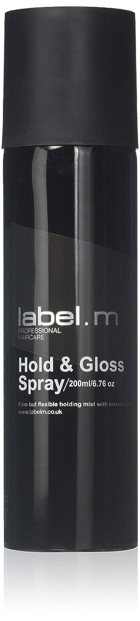 落とし穴買い物に行くウィンクLabel.M Professional Haircare 200MLホールド&グロススプレーLabel.M