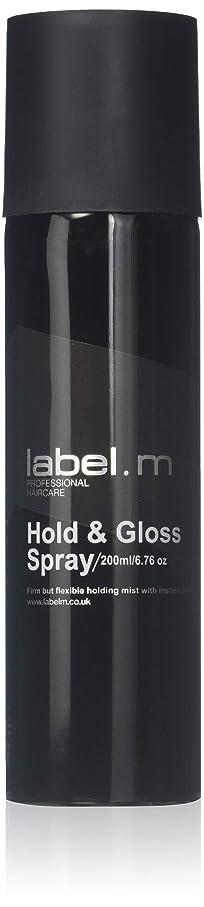 蓄積する宙返り精神Label.M Professional Haircare 200MLホールド&グロススプレーLabel.M