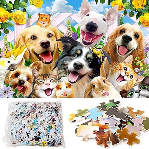 1000 Piezas Lindo Puzzle Perro Gatos, ZoneYan Rompecabezas Papel Animales Feliz, Jigsaw Mascotas Perros y Gatos, Rompecabezas Selfies Animales, Rompecabezas Gracioso Animal (Animal)